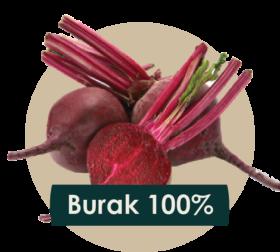 soki cennik 2018 ilustracje owocow - burak-01