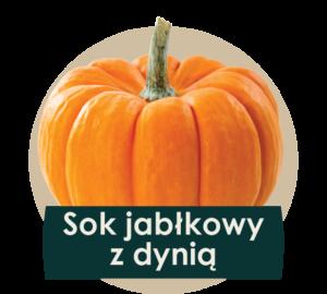 soki cennik 2018 ilustracje owocow - dynia-01