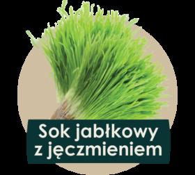 soki cennik 2018 ilustracje owocow - jeczmien-01