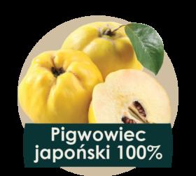 soki cennik 2018 ilustracje owocow - pigwowiec-01