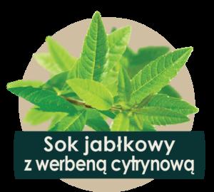 soki cennik 2018 ilustracje owocow - werbena-01