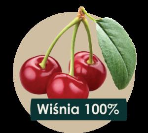 soki cennik 2018 ilustracje owocow - wisnia-01