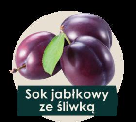 soki cennik 2018 ilustracje owocow2-25
