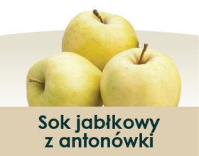 soki_symbole-owocow_antonowka
