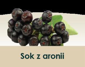 soki_symbole-owocow_aronia-40