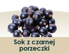 soki_symbole-owocow_porzeczka czarna